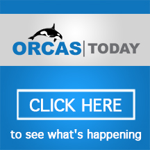 OrcasToday.com to see what's happening on Orcas Island today!